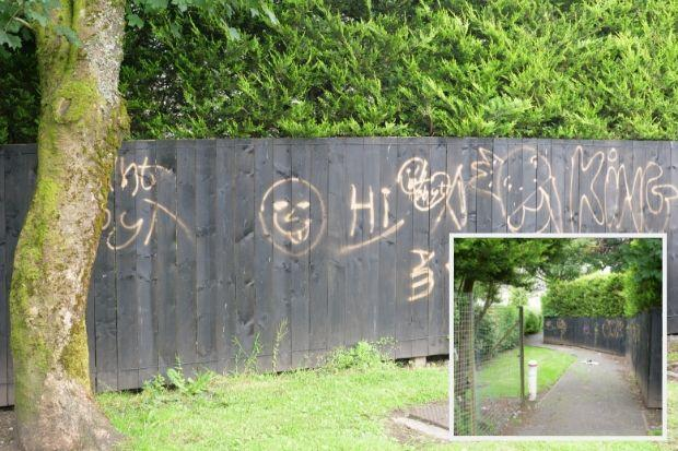 Vandalised area is 'disgrace'