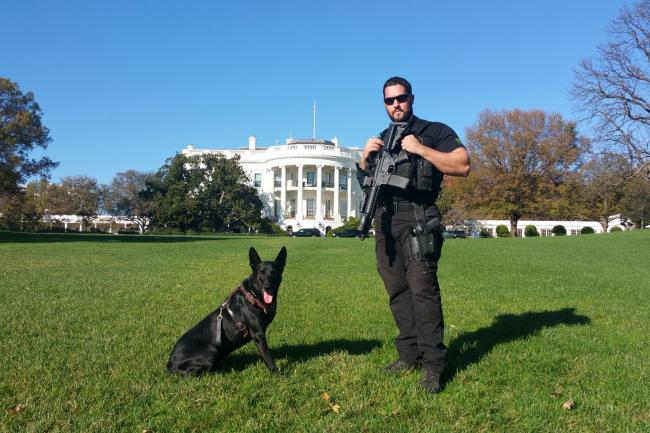 Secret service dog to be honoured for protecting White House