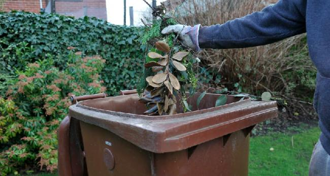 Council plans £40 fee to collect garden waste