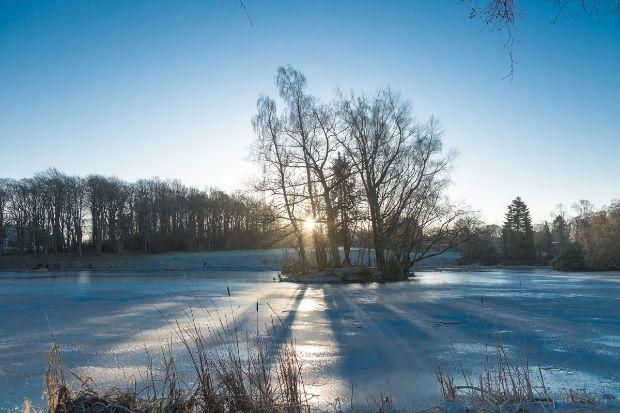 Frozen boating pond in Rouken Glen Park. Pic by Kevin McMurtrie
