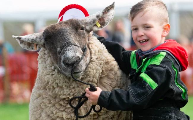 David Tulloch won the Young Handler award when the Neilston Show last took place in 2019
