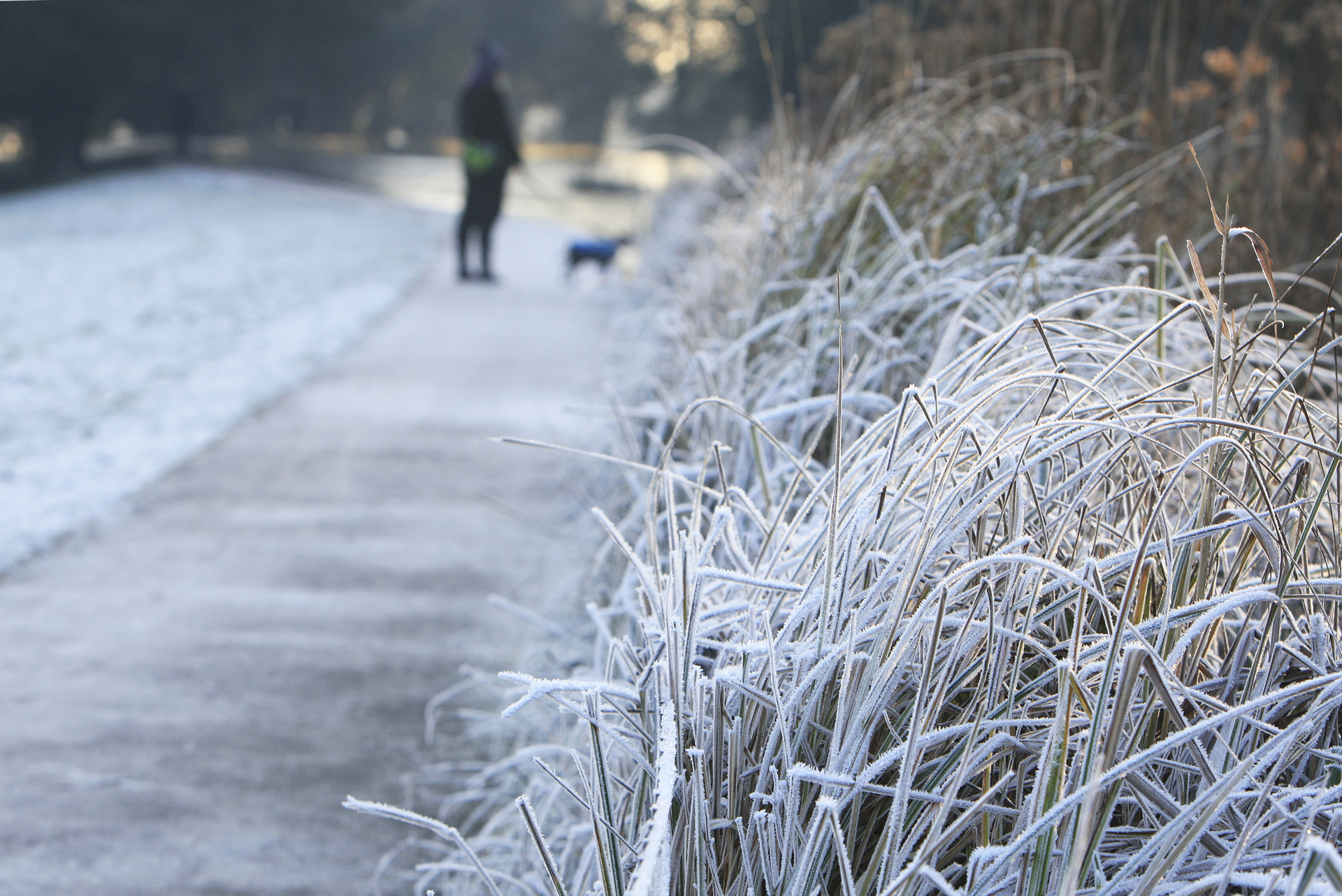 Wintry weather in springtime will see arrival of Arctic air