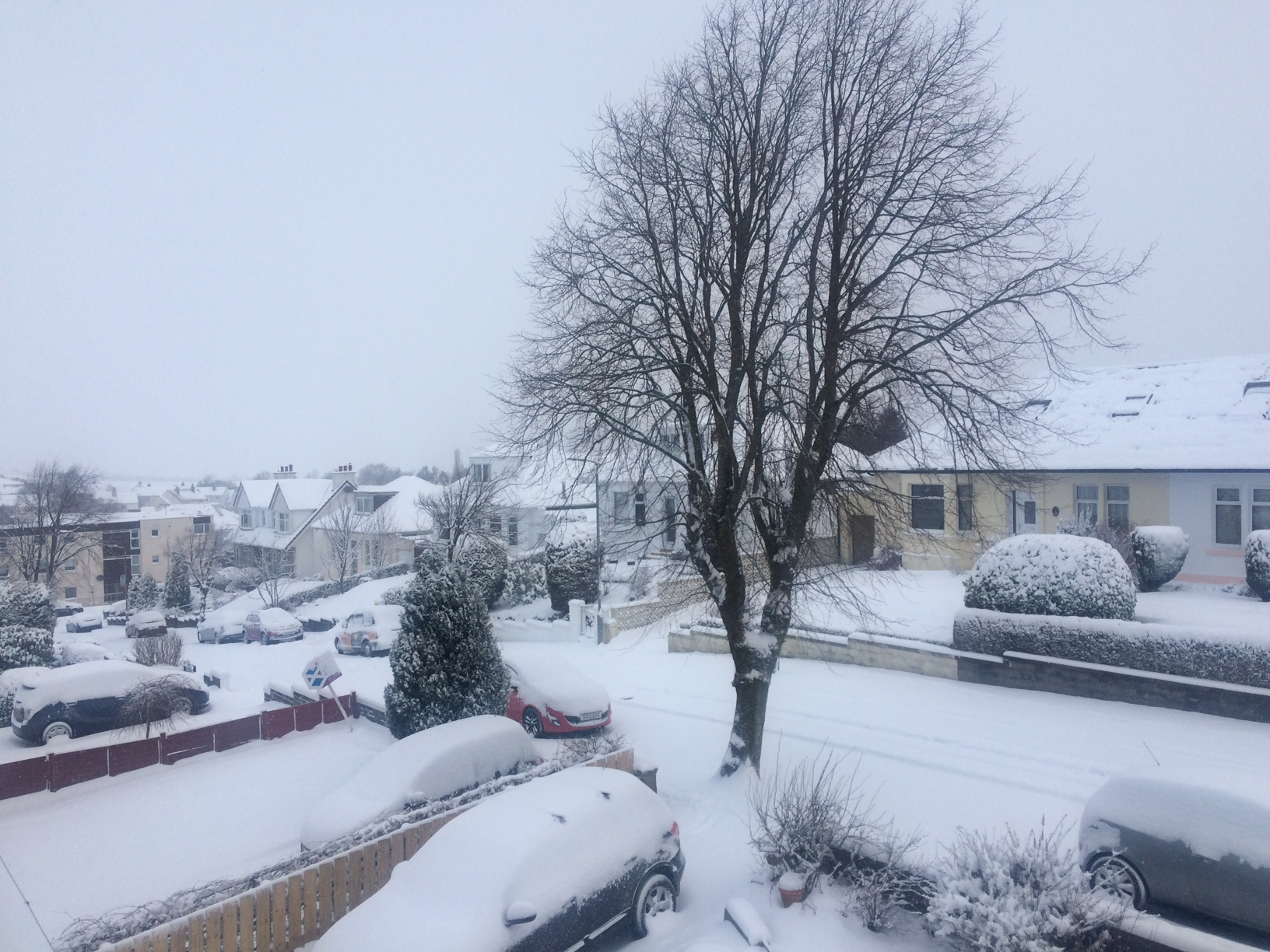 Public told to expect 'cancellations' as weather warning upgraded to red