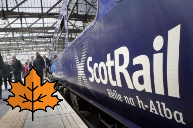 "Fed-up passengers tell ScotRail chiefs: ""Leaf it out!"""