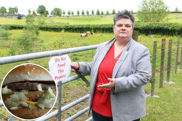 Councillor Angela Convery is urging people to resist the temptation to feed the horses